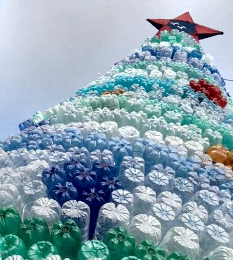 albero natale bottiglie lecce