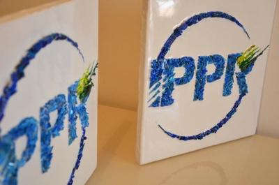 IPPR targa Ladybe