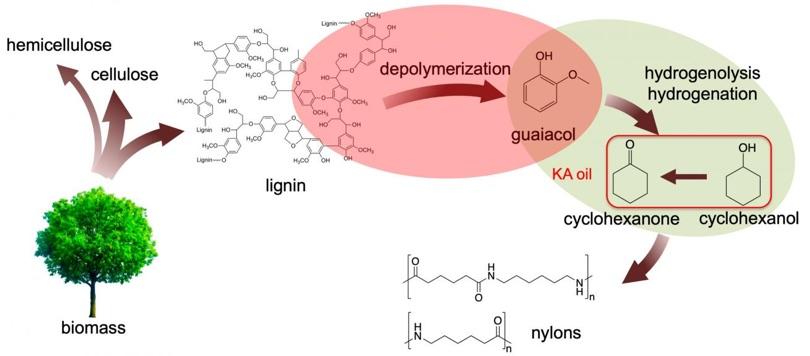 Ames Laboratory lignina cicloesanone