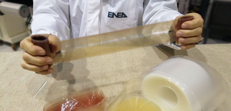 Enea centro ricerche brindisi biopalstiche